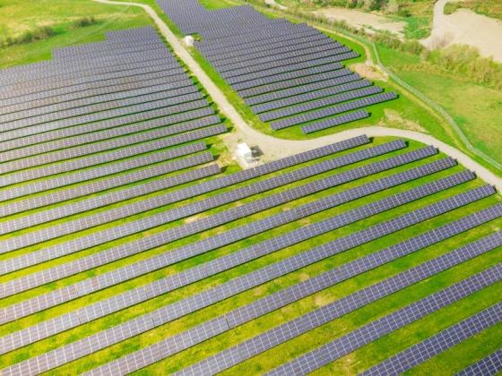 Do Solar Panels Really Save Me Money?